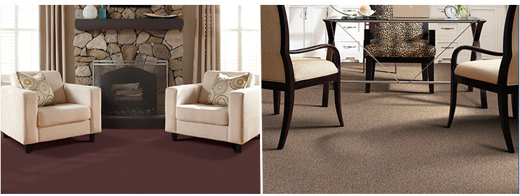 tigressa cherish carpet rooms